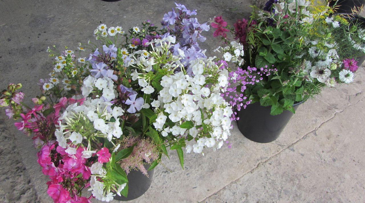 DIY bride bucketfuls
