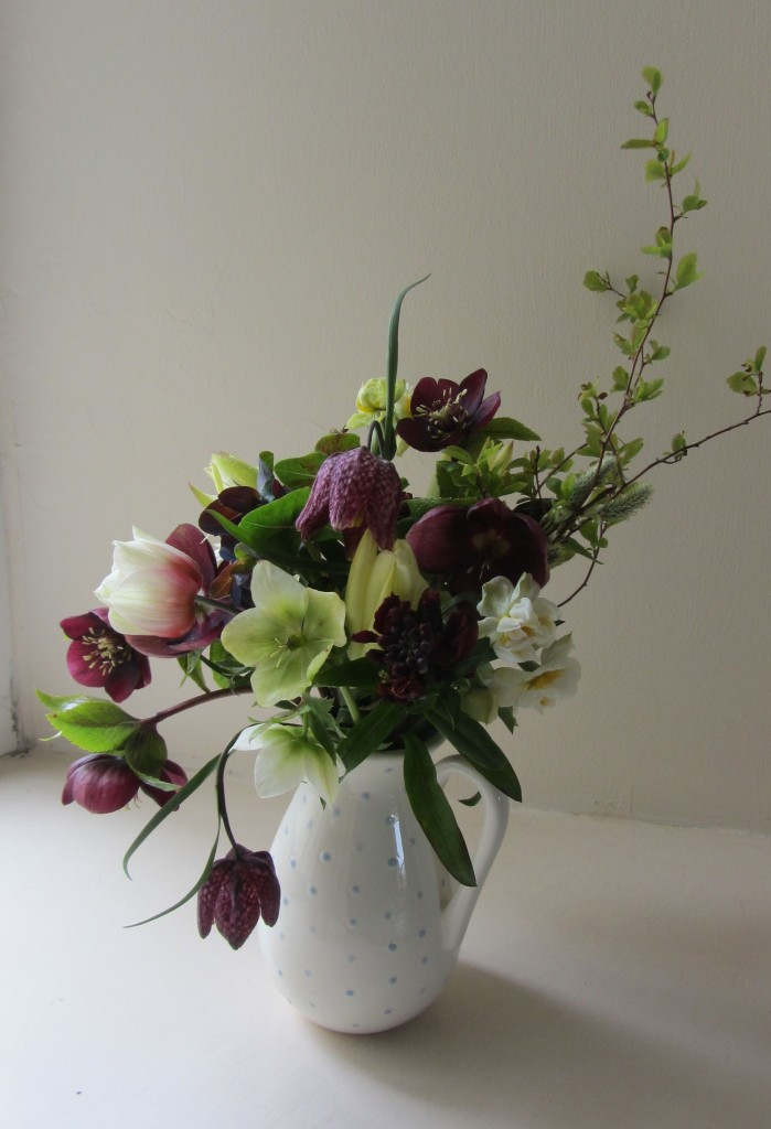 April hellebores jug