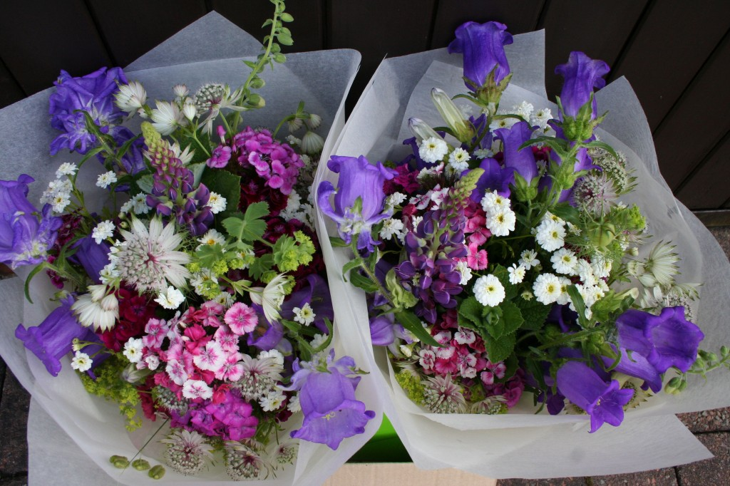 British Flower Week June