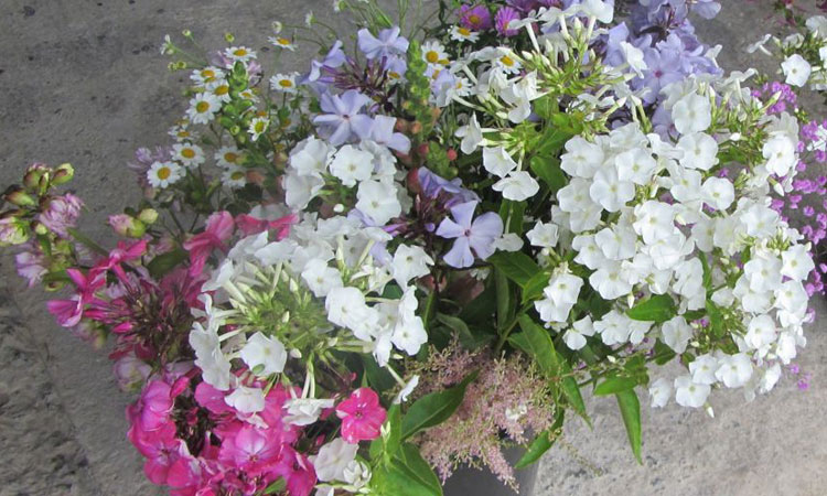 Natural Scottish wedding flowers for the DIY bride