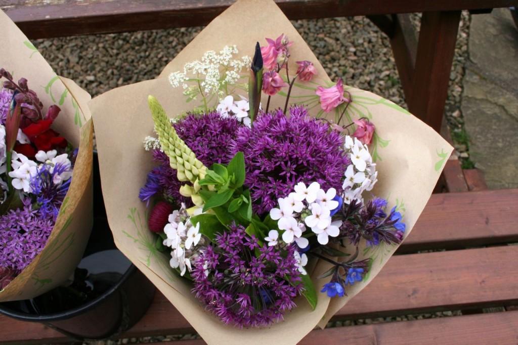 Scottish cut flowers June 4
