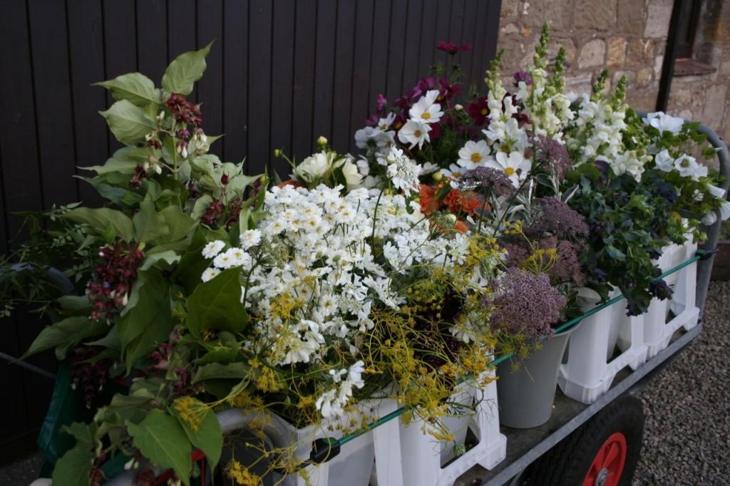 Sept wedding scottish flowers