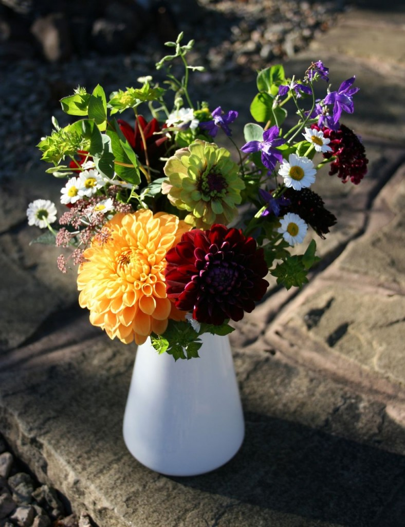 mid October scottish grown flowers