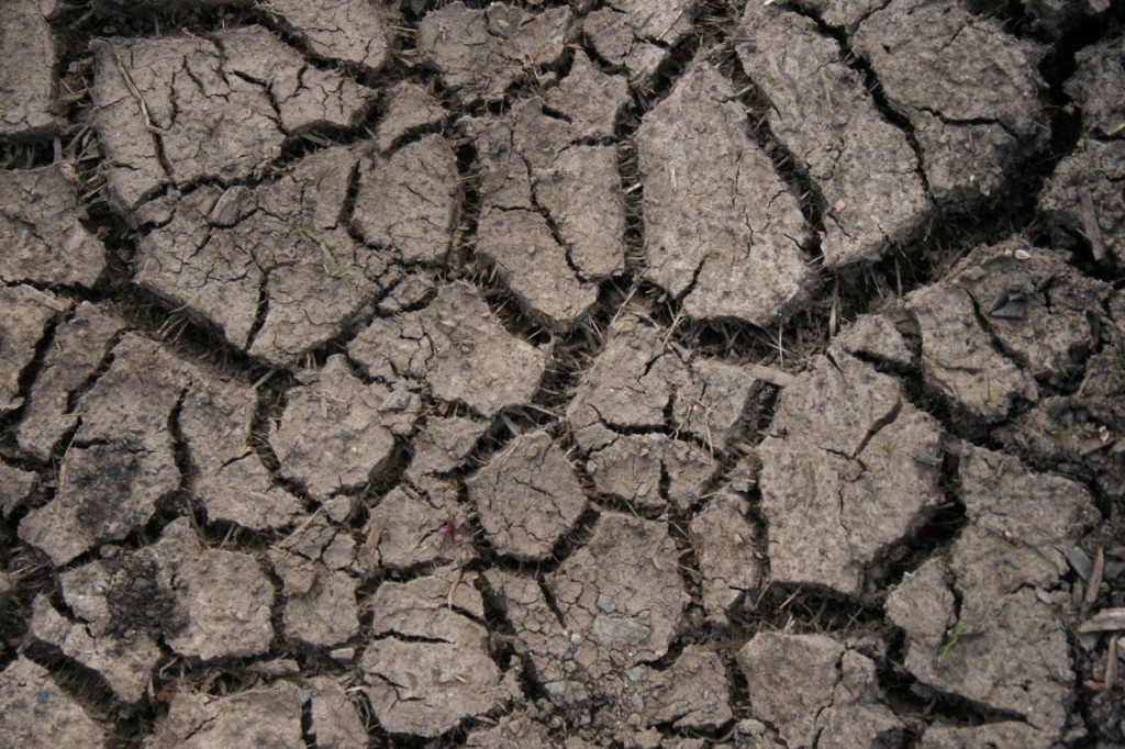 parched earth1