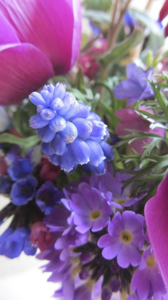spring flowers April